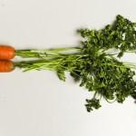 Carrot tige